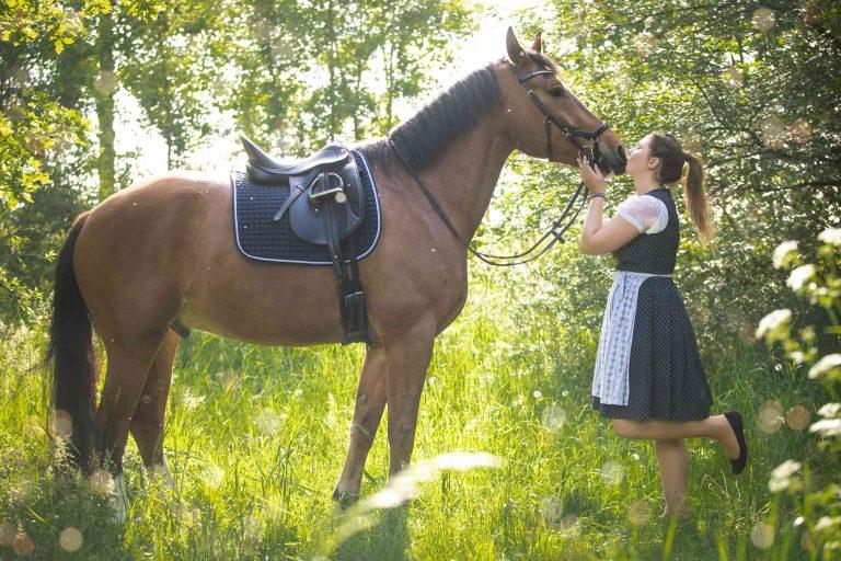 Pferdeshooting im Wald und auf der Heide von Claudia Link Fotografie und Grafikdesign Berching Neumarkt Roth