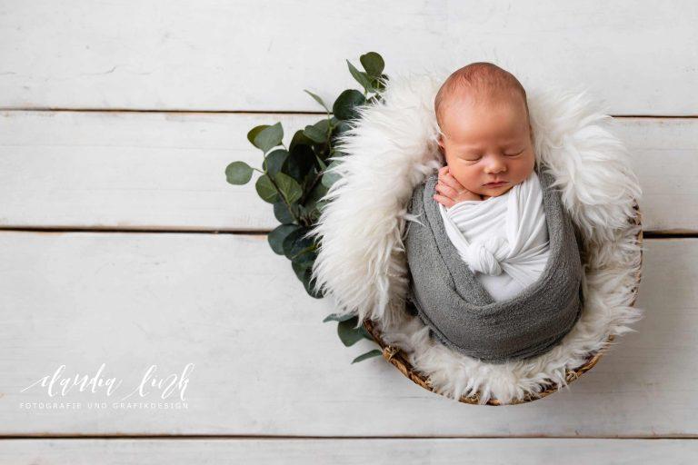 Aneignen von Skills im Bereich Neugeborenenfotografie und Newbornshooting bei einem Workshop, neuer Fotobereich bei Claudia Link Fotografie und Grafikdesign: Newbornfotografie, Babyfotografie mit Props