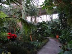 Palmengarten Zürich