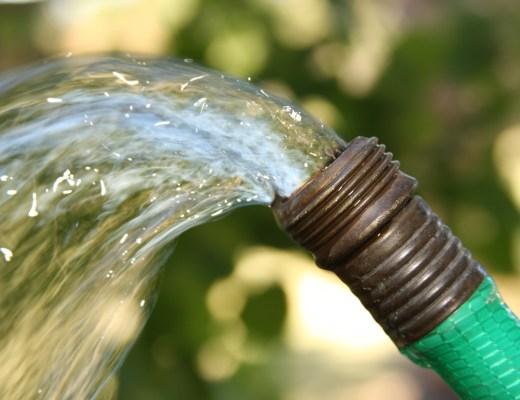 Mangueira verde jorrando bastante água