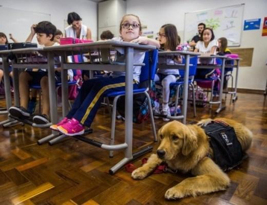 a foto mostra uma sala de aula com várias crianças de 9 anos sentadas em suas carteiras. No chão, ao lado de uma carteira, está Tiffany, uma moldem retirarei com um colete preto. Ela está ao lado de Aninha.