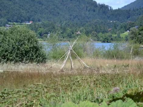 Ufer Hintersee
