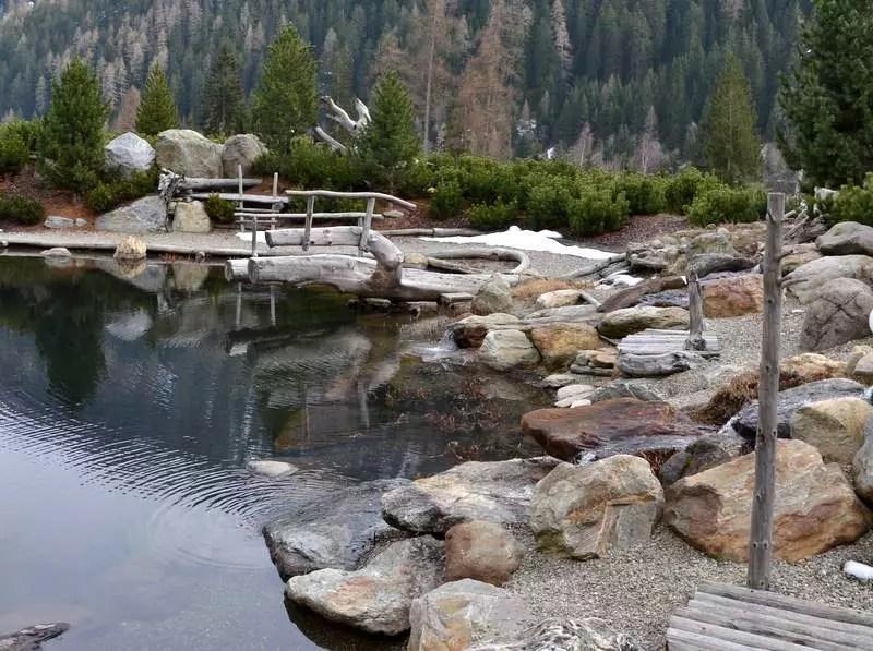 Schwimmteich Arosea