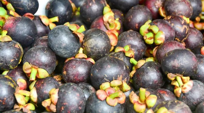 Magosteen Früchte am Markt