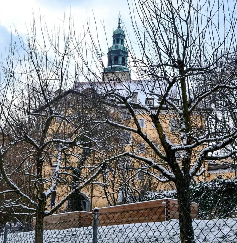 verschneiter Obstgarten in Salzburg Mülln