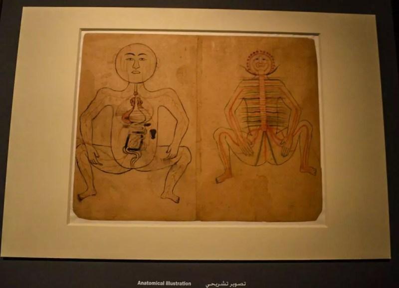 Anatomische Zeichnung im MIA Doha