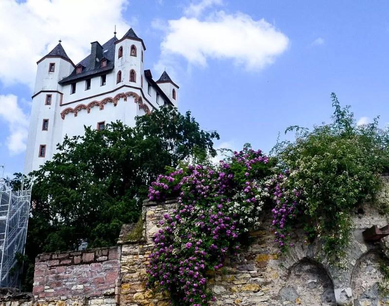 Schloss Eltville