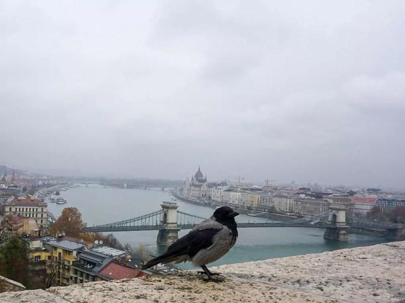 Blick auf Budapest