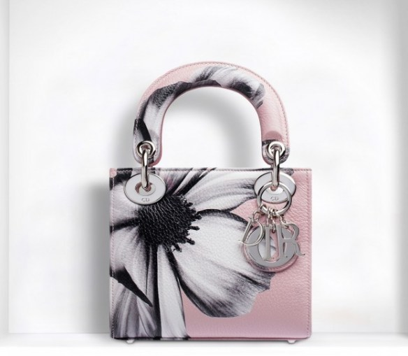 mini-lady-dior-con-stampa
