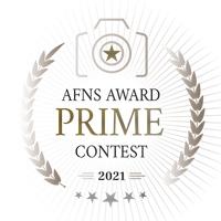 AFNS Award Prime Contest