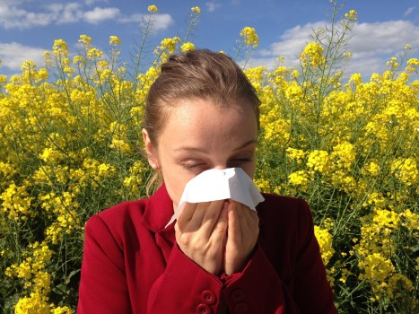 Itchy eyes? Top tips for hayfever sufferers
