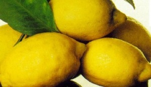 commensali extracomunitari limone-costa-amalfi