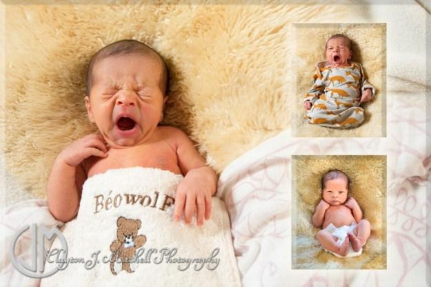 newborn photography Berkeley CA
