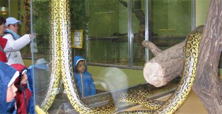 Les enfants ont pu approcher de très nombreux animaux au zoo de Sarrebruck