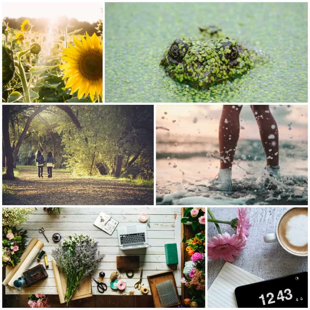 The 5 Best Places to Find FREE Photos for your Blog