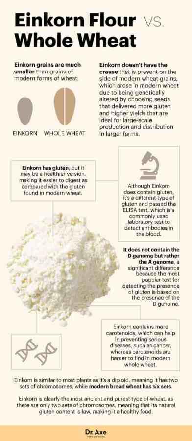 Einkorn Flour - Dr Axe