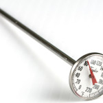 How to Pick the Right Meat Thermometer