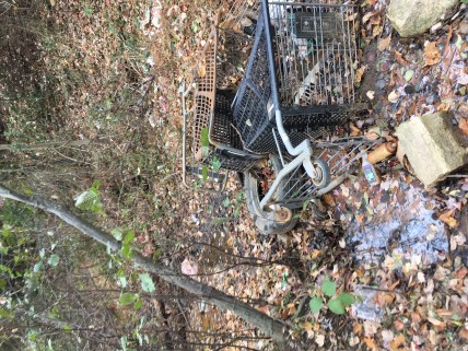 shopping-carts-in-stream