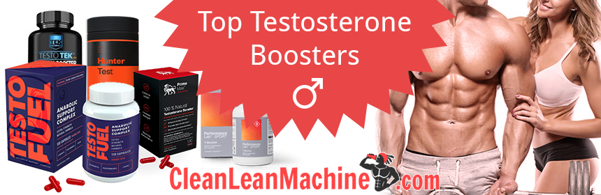 Top Testosterone Boosters - TestoFuel, Prime Male, Testogen, Hunter Test, Performance Lab Sport T-booster