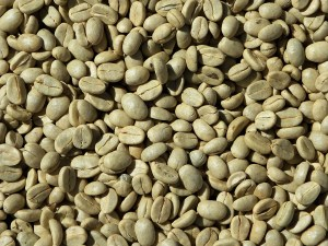 Leanbean reviews - ingredients - green coffee
