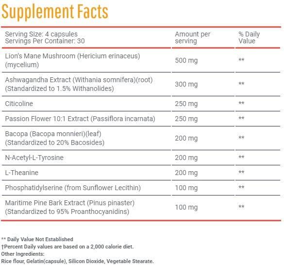 Hunter Focus Ingredients review