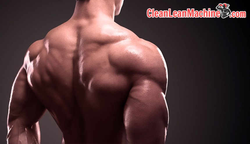 Scientific bulking guide to building lean muscle mass - winter bulking