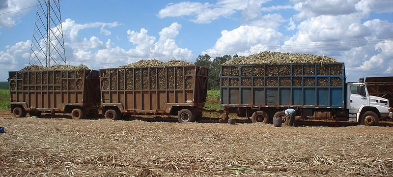 biomass-sustainability