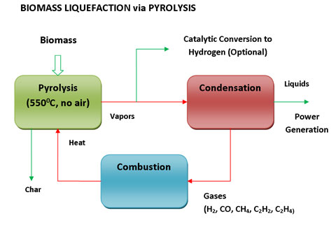 pyrolysis of biomass