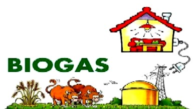 Output from a Biogas Plant | Blogging Hub