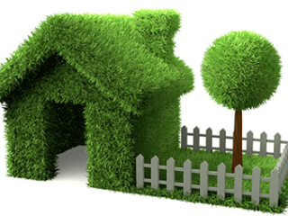 make-your-home-green