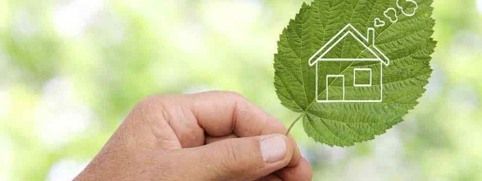 eco-friendly money saving tips