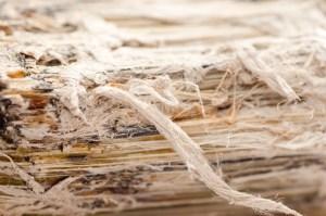 DIY-asbestos-removal