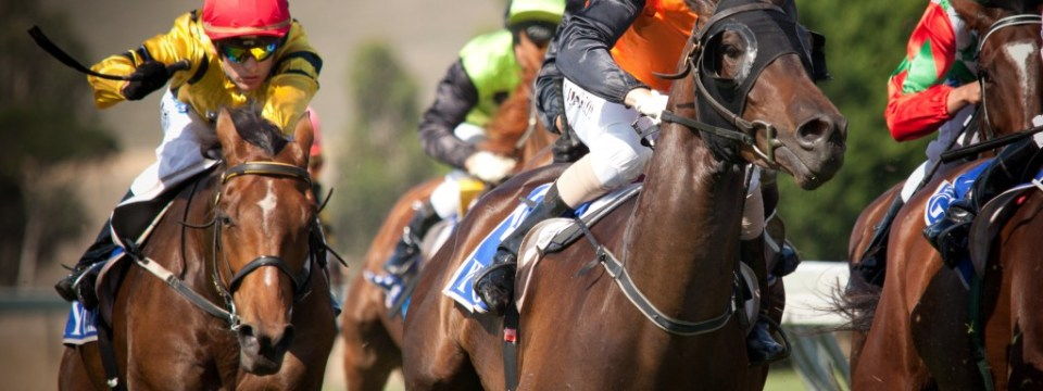 horse-racing-misconception