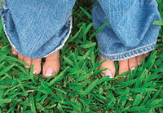 Woman's feet in the grass