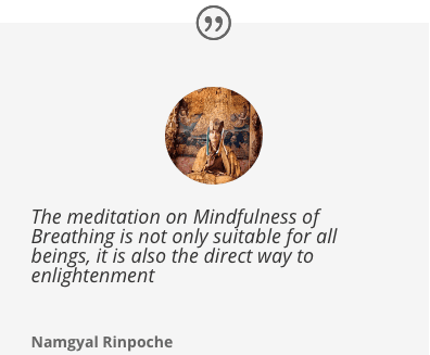 Namgyal Rinpoche Quote