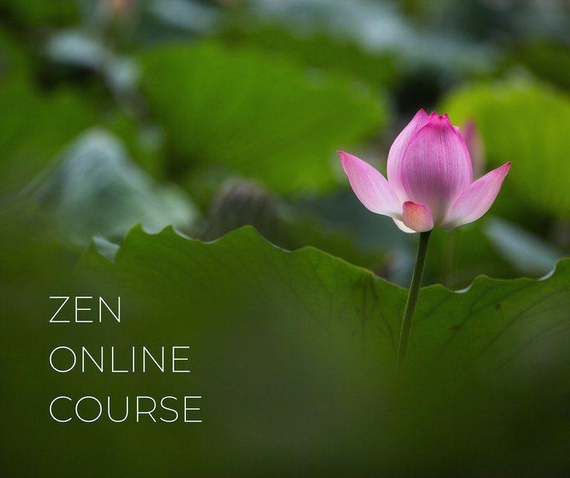 Zen online course - Clear Sky Center