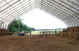 Horse riding Arena Inside Case Study Photo