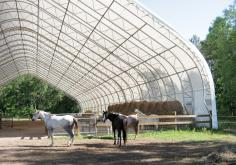 Horse riding Arena Case Study Photo