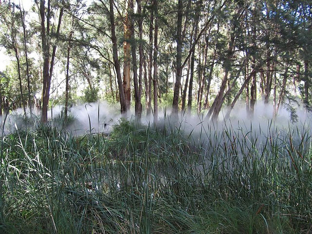 "Fog Sculpture #94925 ""Foggy Wake in a Desert: An Ecosphere,"" Sculpture Garden, Australian National Gallery, Canberra"