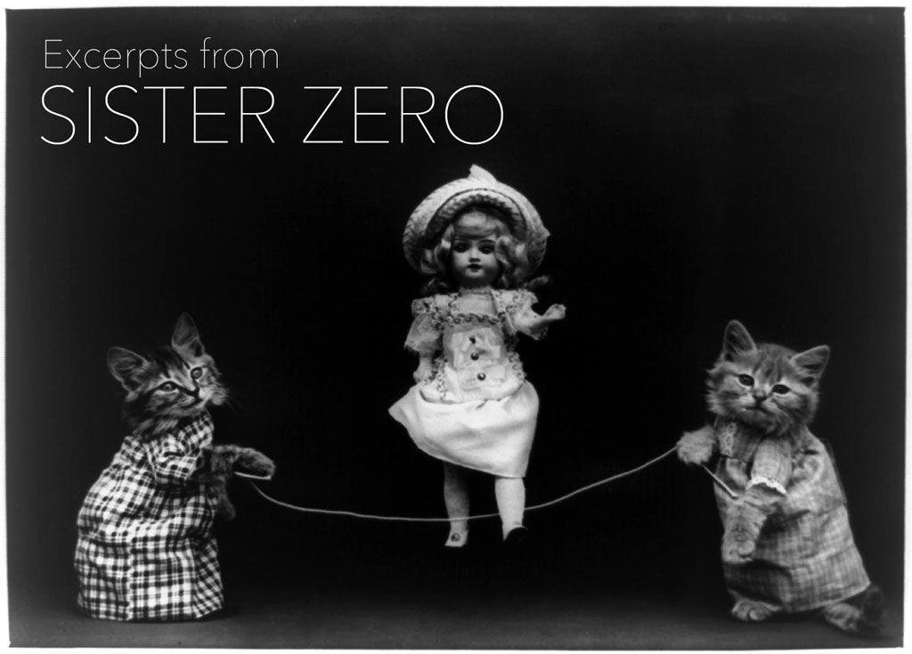 EXCERPTS FROM SISTER ZERO  by Nance Van Winckel