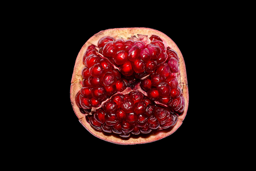 POMEGRANATE by Rachel Nevada Wood