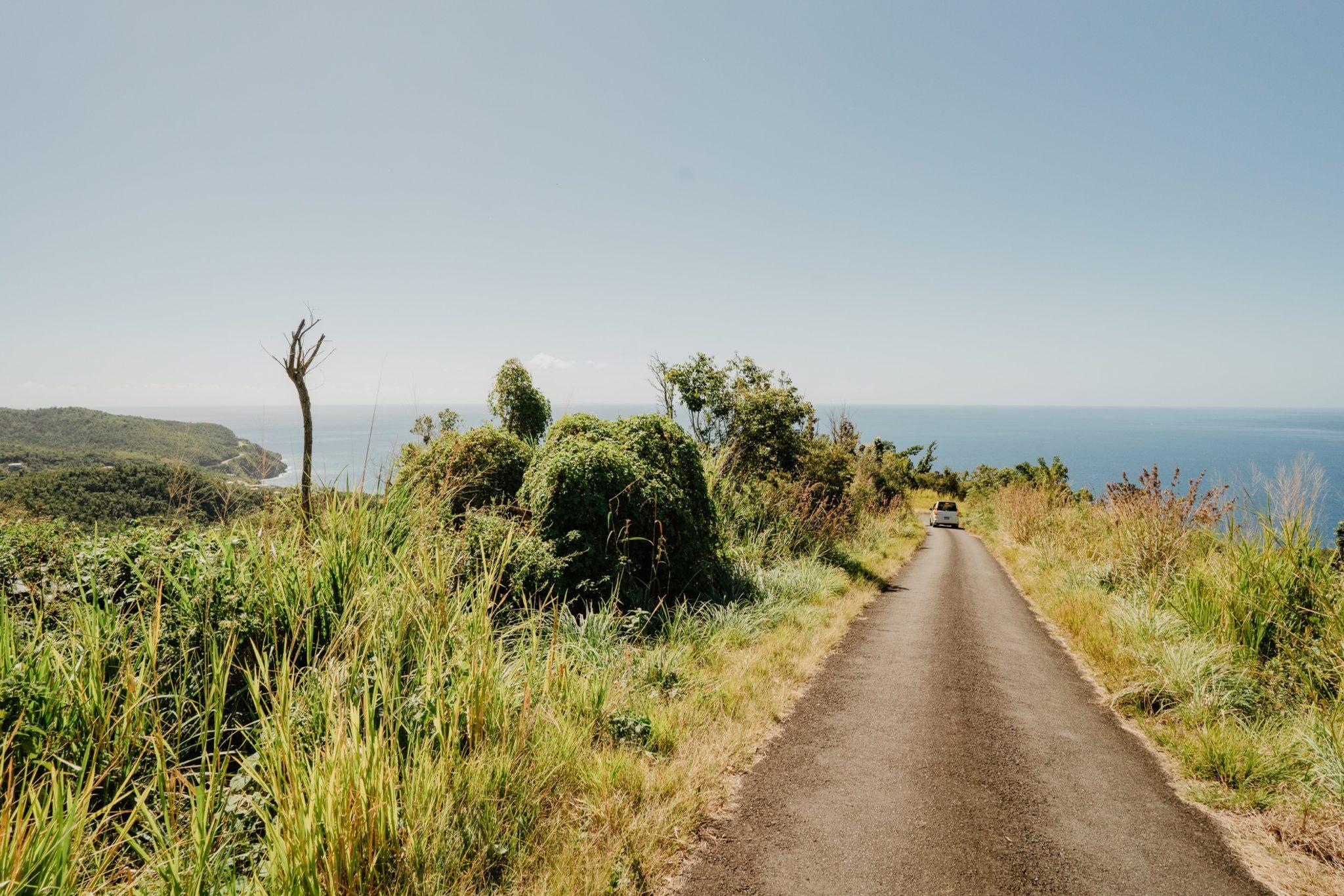 Sur la route du retour, Syndicate Nature Trail, Morne Diablotin, Dominique