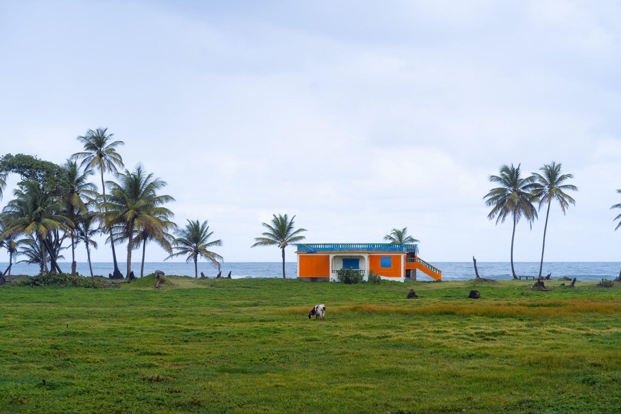 Sur la route près de Douglas Charles Airport, Dominique