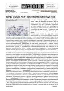 thumbnail of W GIANDOLFI ambiente elettromagnetico