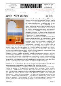 thumbnail of W GILY Pinotti e Somaini La cornice