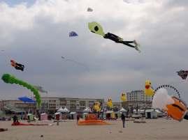 Sortie à Berck au festival des cerfs volants