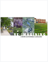 ReImagining - 2008 Vacant Land Study