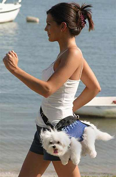 Isnt that cute? Imagine her with a lil ribbon on her head.  (The dog, not that skinny girl. Who cares about her.)