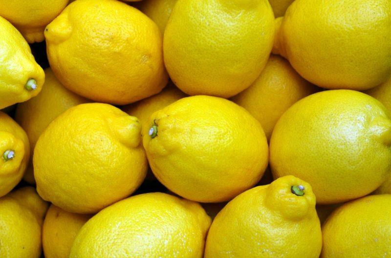 Wohnmobil Wassertank reinigen mit Zitronensäure