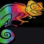 rainbow Clever Chameleon logo